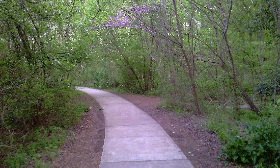 Greensboro, Carolina del Norte: bog gardens pathway