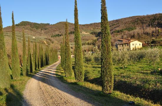 Castiglion Fiorentino, Italy: 素敵なアプローチ