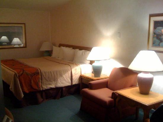 Best Western New Oregon: Our king sized bed.