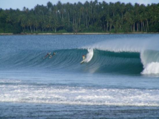 Gambar Pulau Nias