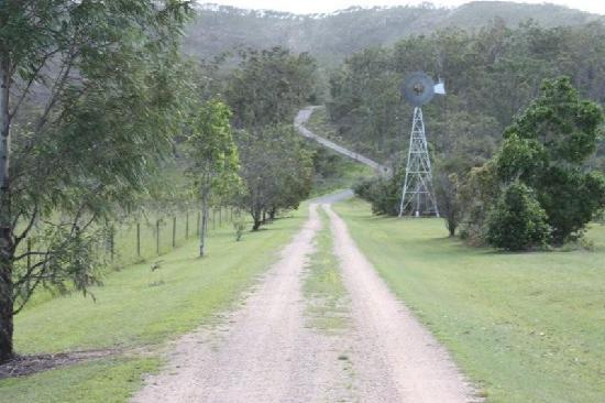 Allawah Retreat: The driveway with the gorgeous Windmill