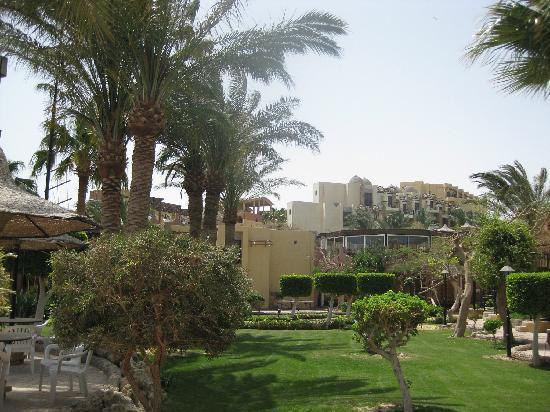 Jewels Sahara Boutique Resort: le petit jardin de l'hôtel, avec des appartements directement sur la plage (pas trop propre para