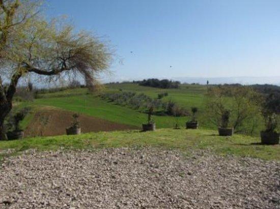 Fattoria San Donato: panorama dalla fattoria