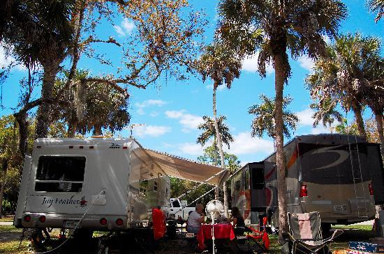 Collier Seminole State Park : Our campsites