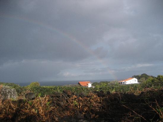 Piedade, Portugal: o Zimbreiro après une averse du soir en février 2010