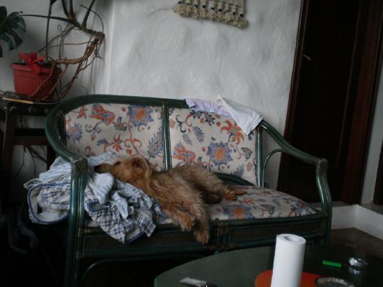 Raices Finca: Die Wohnküche war Ungemütlich und sehr klein (12qm)