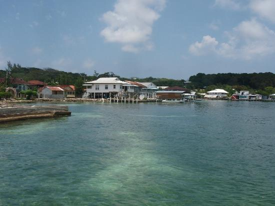 Utopia Village: Utila town harbour