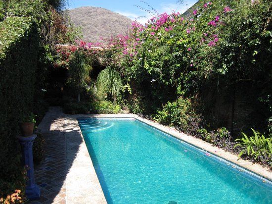 Casa Flores: The pool