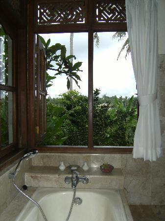 Alam Jiwa: Room with a view!