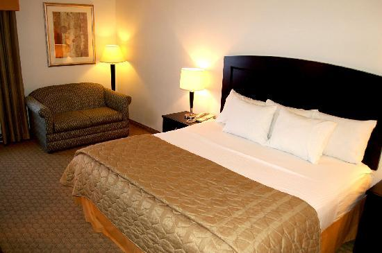 Radiance Inn And Suites: King Bed-2010