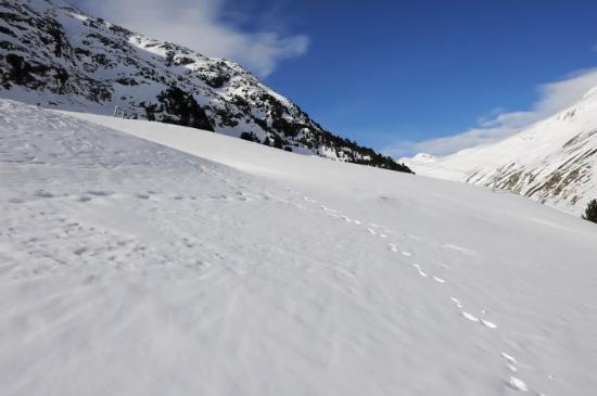 Vent, Austria: Make a step left or right from the path and u are in snow up the knee..