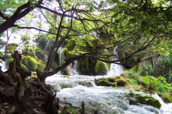 Cascades : Hrvasta 2006 laghi di Plitvice