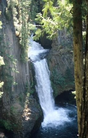 Roseburg, OR: Toketee Falls (Oregon)