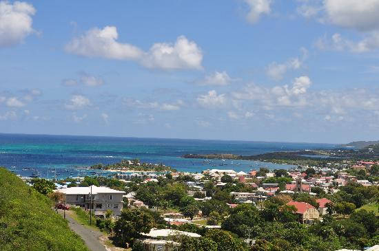 Carringtons Inn St. Croix: View from Flamboyant.
