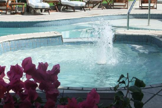 Misty Waves Boutique Hotel Hermanus: Tranquill Pool area