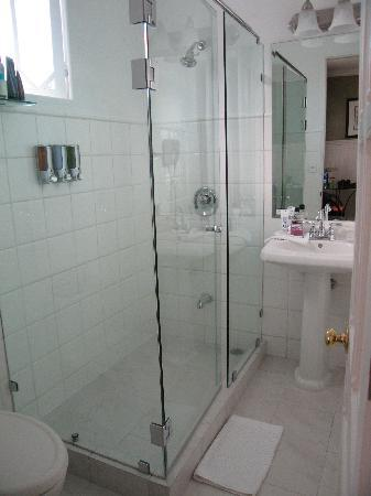 Hotel Grano de Oro San Jose: bathroom