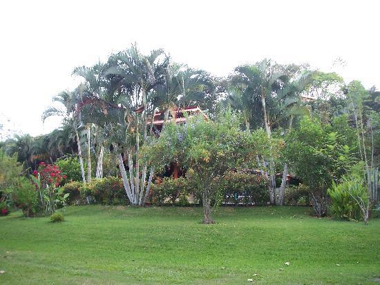 El Cafetal Inn: the grounds around the pool