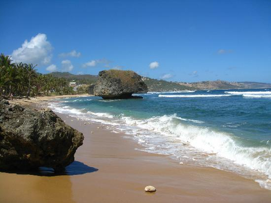 ECO Lifestyle & Lodge: Bathsheba beach little waves but soupy