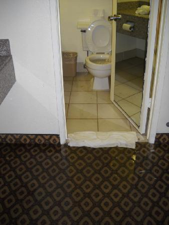Days Inn Bakersfield : Toilet overflows into the bedroom