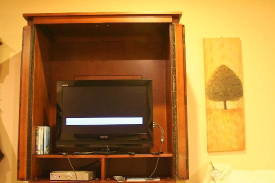 Elk Meadow Cabins: Flat screen (with DVD player) in the living room