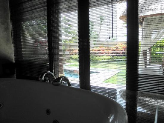 The DreamLand Luxury Villas & Spa: jacuzzi with pool view