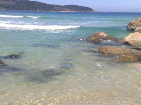 Ilha Grande Photo