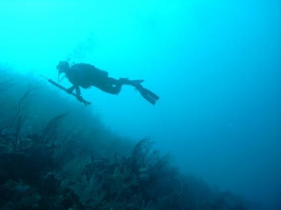 Hunting the reefs off Guantanamo.