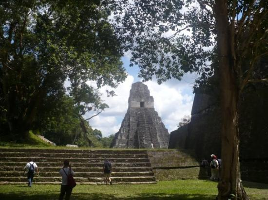 Foto de Tikal National Park