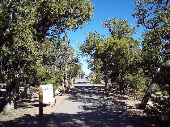 Canyon View Information Center: Path to Mather Point