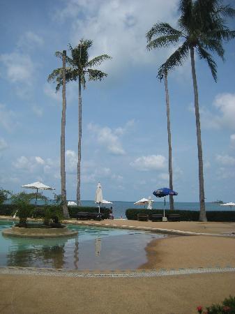 Chang Park Resort & Spa: Pool area