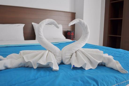 AsiaLoop G-House: The Beautiful Swan Welcoming