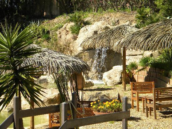 Hotel & Residence Les Medes : la cascade