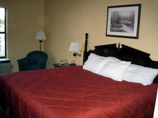 Quality Inn: Large Bed