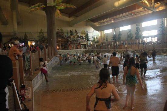 Great Wolf Lodge Grapevine: Too many people, no room to move.
