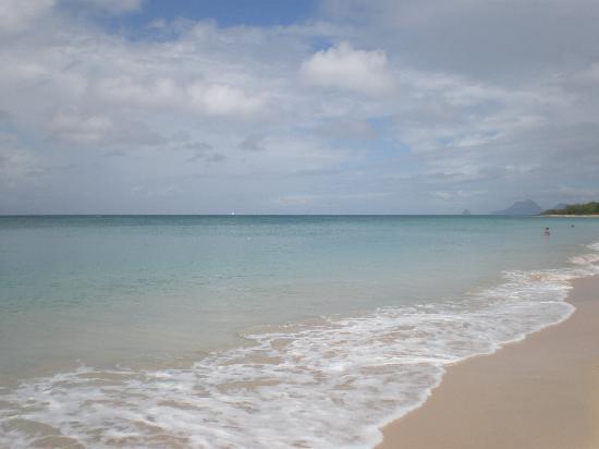 Le Hameau de Beauregard : La plage
