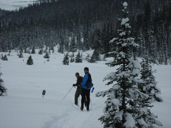 Skoki Lodge: Skiing in the meadow on day 2