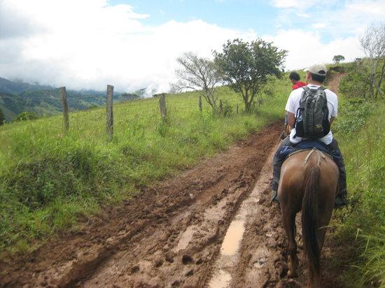 Sabine's Smiling Horses : Beautiful views along the way