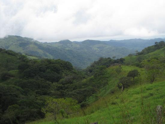 Sabine's Smiling Horses: I believe this is overlooking the Puntarenas area