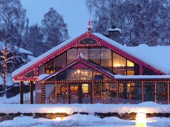 La Taverna: Hogmanay 2009