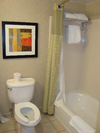 Holiday Inn Manassas - Battlefield : bathroom