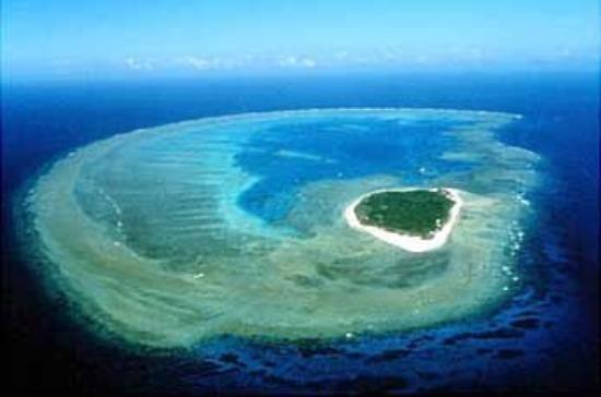 Lady Musgrave Island. Composed entirely of coral.