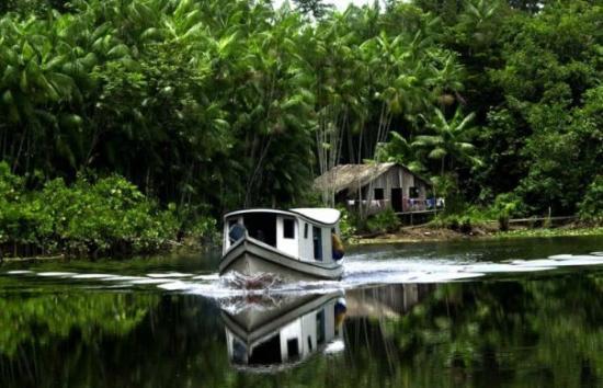 Manaos, AM: Manaus, Estado do Amazonas, Brasil