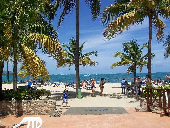 Plage Picture Of Grand Paradise Playa Dorada Puerto