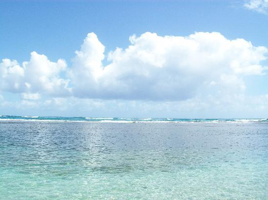 Grand Paradise Playa Dorada: mer