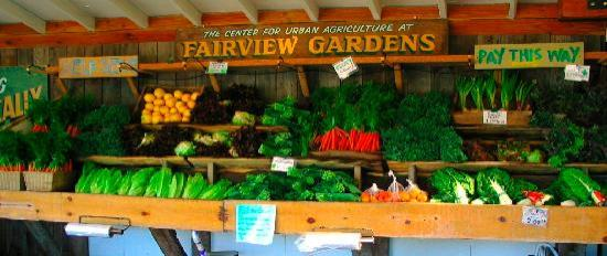 Fairview Gardens: The Fairview Garden's Stand