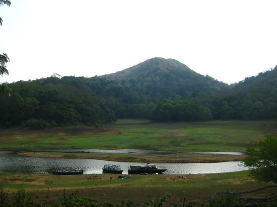 Thekkady Accommodation