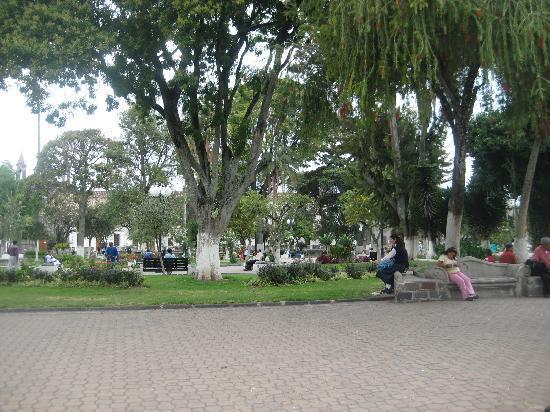 Hotel Montecarlo: Park in Ibarra