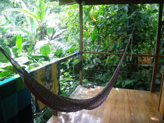 El Tucan Jungle Lodge: Hammock in front of room, with jungle view.