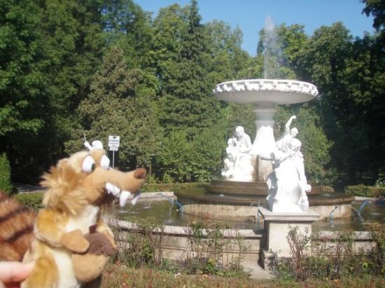 Cluj-Napoca, Romania: Petite marche pour aller jusqu'a la fac. Tres beau parc !