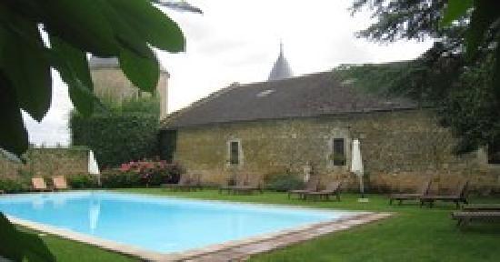 Château de Curzay : La piscine du Château